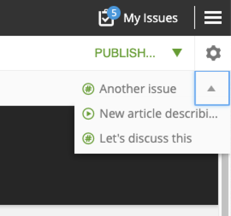 Issues Menu in the Preview toolbar